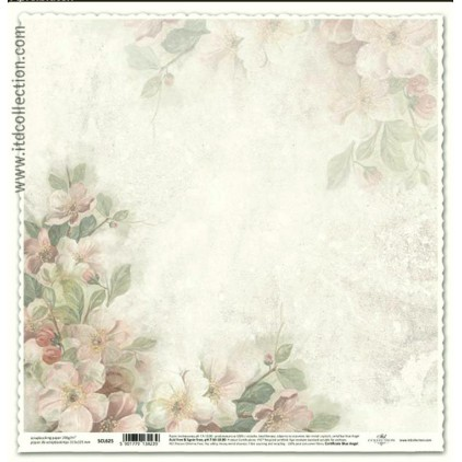 ITD Collection - Papier do scrapbookingu - SCL625