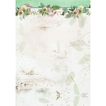 Papier do tworzenia kartek i scrapbookingu - Studio Light - Love and Home 05 - Basic Paper