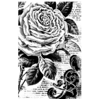 Rubber stamp - Stamperia - Rose