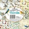 Decorer - Set of scrapbooking papers - Birds