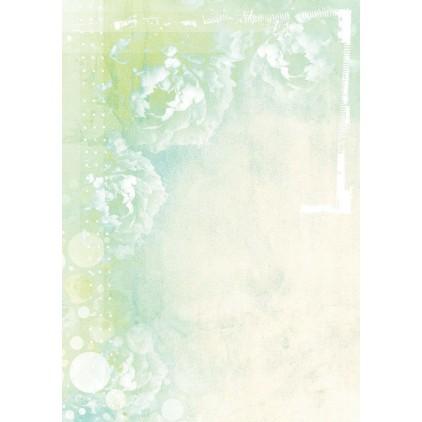 Papier do tworzenia kartek i scrapbookingu - Studio Light - So Spring BASISSS253