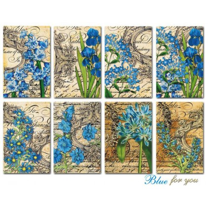 Decorer - Set of mini scrapbooking papers - Blue for you