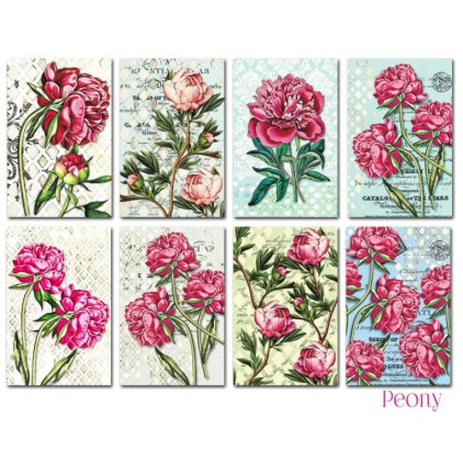 Decorer - Set of mini scrapbooking papers - Peony