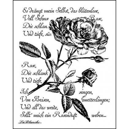 Silicon stamp - LaBlanche - Written Rose
