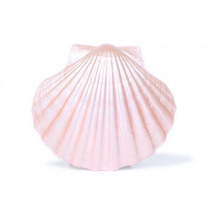 Farba perłowa - Daily Art - łososiowa - 50ml