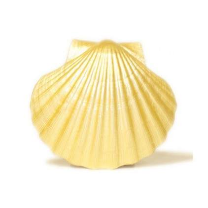 Pearl paint - Daily Art - light gold - 50ml