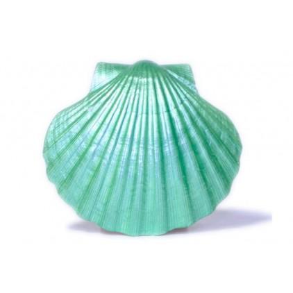 Farba perłowa - Daily Art - zielona - 50ml