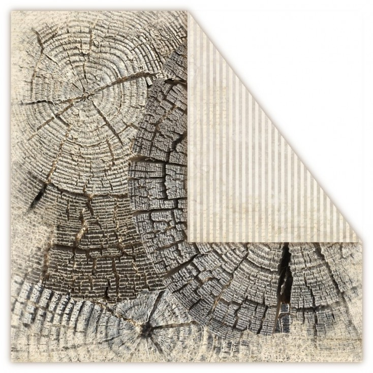 Scrapbooking paper - UHK Gallery - Terra Incognita - Earth