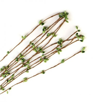 Twig with buds - 5 pcs - green