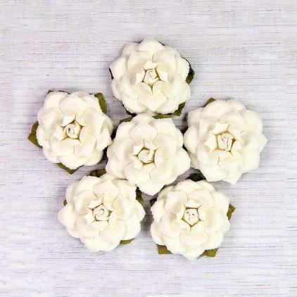 Paper flower set - Little Birdie - Carol Classic - 6 flowers
