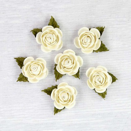 Papierowe róże ecru - Little Birdie - Sharon Moon Light  - 6 kwiatków