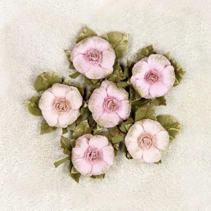 Paper flower set - Little Birdie - Victorian Rosella Blush- 6 flowers