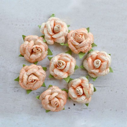 Paper flower set - Little Birdie -  Angel Rose Coral - 8  flowers
