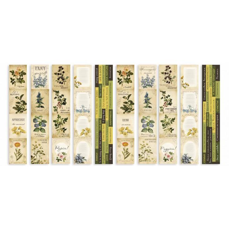 Papierowe paski do tworzenia kartek i scrapbookingu - Fabrika Decoru - Botany Summer -zestaw 5 pasków