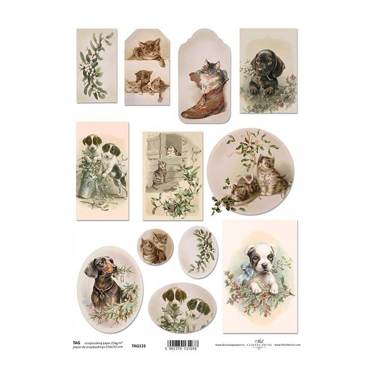 Papier do scrapbookingu - TAG0133- ITD Collection
