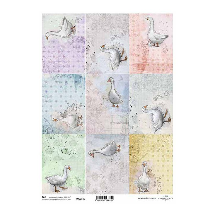 Scrapbooking paper - TAG0145 - ITD Collection