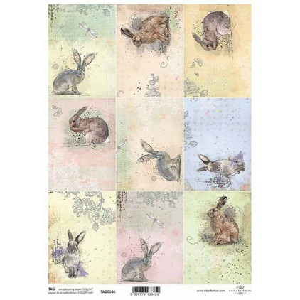 Scrapbooking paper - TAG0146 - ITD Collection