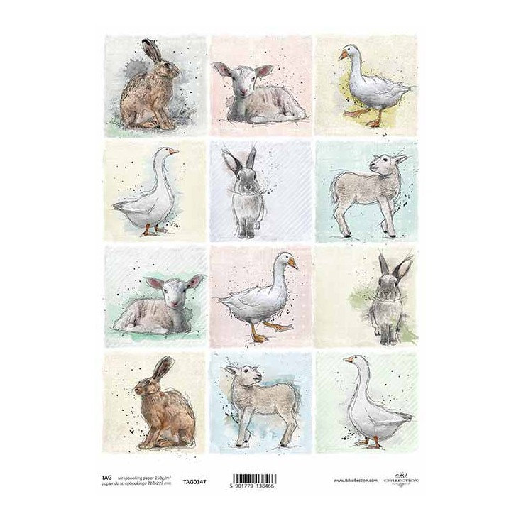 Scrapbooking paper - TAG0147 - ITD Collection