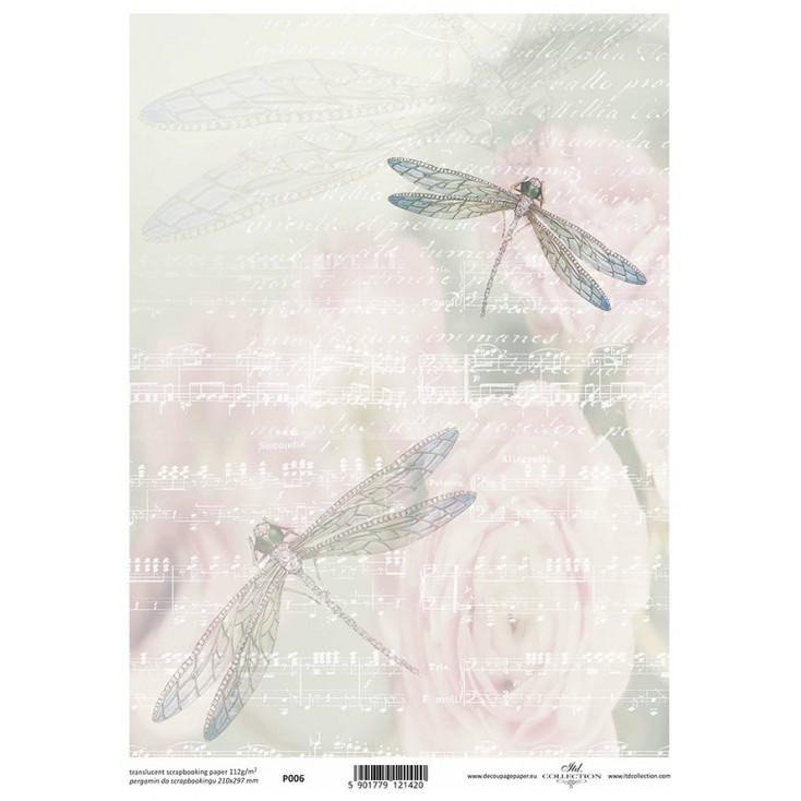 Papier pergaminowy drukowany, kalka - P0006- ITD Collection
