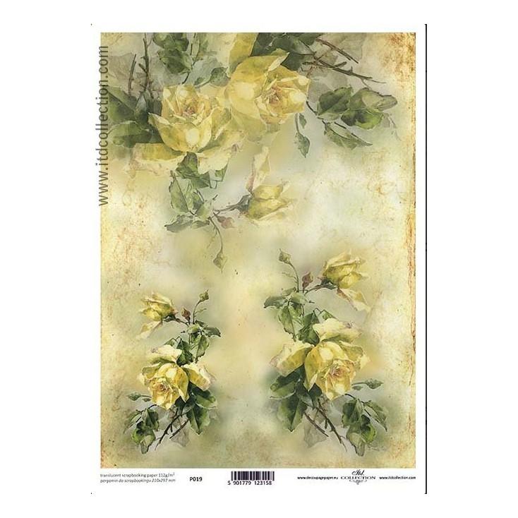 Papier pergaminowy drukowany, kalka - P019- ITD Collection