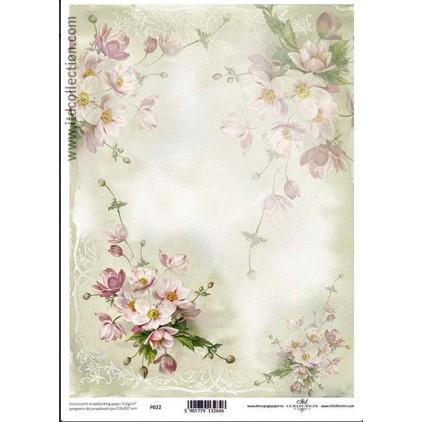 Papier pergaminowy drukowany, kalka - P022- ITD Collection