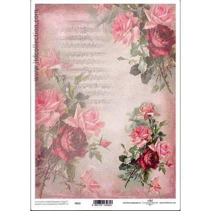 Papier pergaminowy drukowany, kalka - P023- ITD Collection