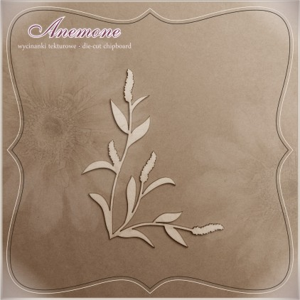 Chipboard - Anemone - Allseed