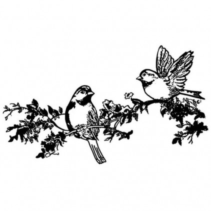 Set of clear stamps - Stamperia - Birds