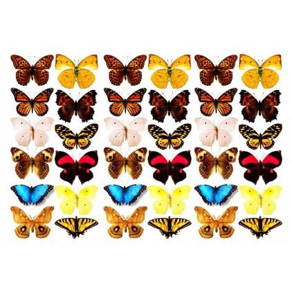 "Folia z nadrukiem, nakładka - Fabrika Decoru -""Butterflies 3D"""