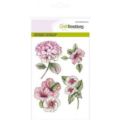 Set of clear stamps - Craft Emotions - Hydrangea-Hibiscus