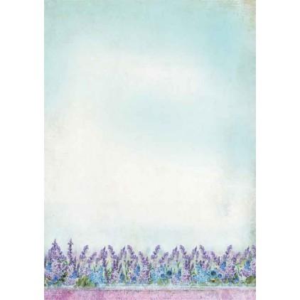 Papier do tworzenia kartek i scrapbookingu A4- Studio Light - La Provence BASISLP199