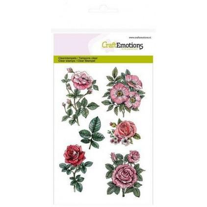 Stemple / pieczątki - CraftEmotions - A6 - Botanical Rose Garden 1 - 130501/1240