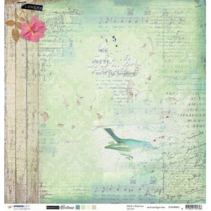 Papier do tworzenia kartek i scrapbookingu - Studio Light - Romantic Botanic - SCRAPRB02