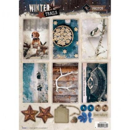 Die Cut Sheet Photos - Studio Light - Winter Trails - EASYWT626