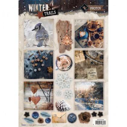 Die Cut Sheet Photos - Studio Light - Winter Trails - EASYWT628