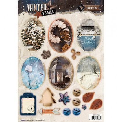 Die Cut Sheet Photos - Studio Light - Winter Trails - EASYWT629