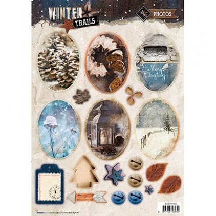 Obrazki do budowania kompozycji Photos - Studio Light - Winter Trails - EASYWT629