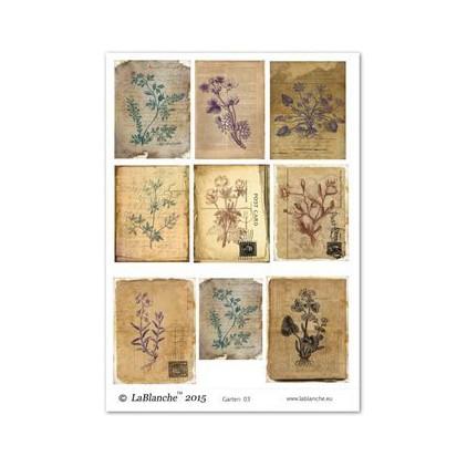Papier do scrapbookingu obrazki A4- La Blanche - garten 04
