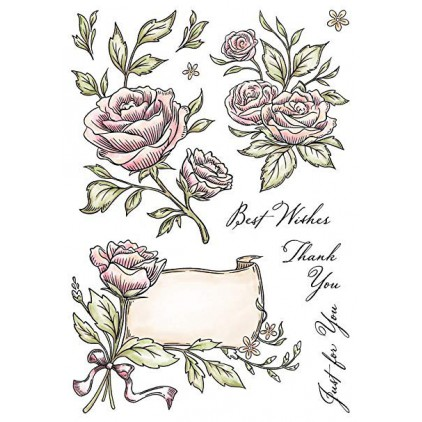 Set of clear stamps - Wild Rose Studio - 14,5 x21 - Antique Roses AS004