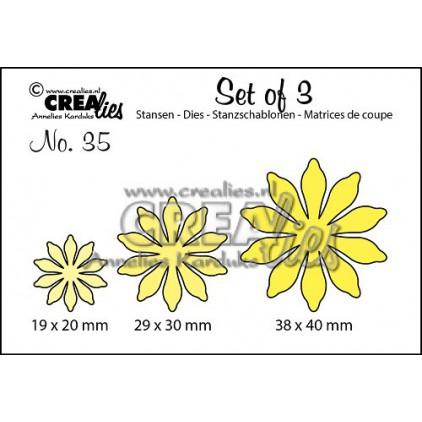 Wykrojniki - Kreatywne kwiaty - Crealies -CLSet35