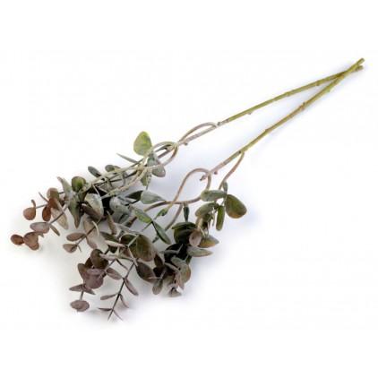 Gałązka eukaliptusa - 1 szt. - szarozielony