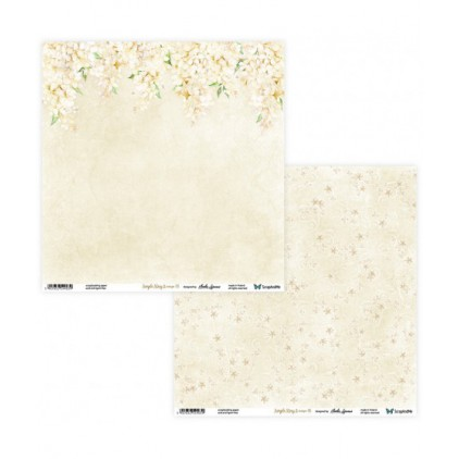 Set of scrapbooking papers - ScrapAndMe - Simple story 2- beige - 05/06