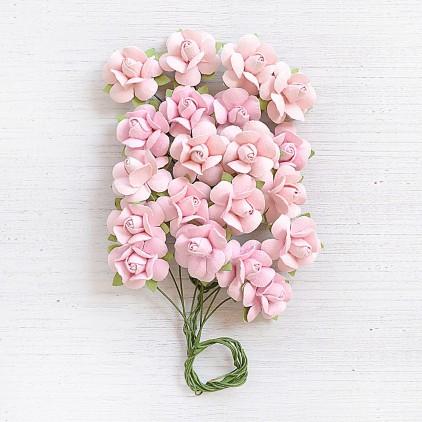 CR79238 - kwiatki papierowe - Little Birdie - Catalina Pearl pink