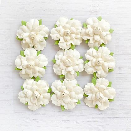 CR69582 scrapbooking flowers - Little Birdie -CR55763 - kwiatki papierowe - Little Birdie - Pearl Petites Vivid Palette