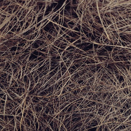 Sisal - sisal fiber - natural brown