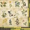 Papier do tworzenia kartek i scrapbookingu - Fabrika Decoru - Botany Summer - Obrazki do wycinania 02