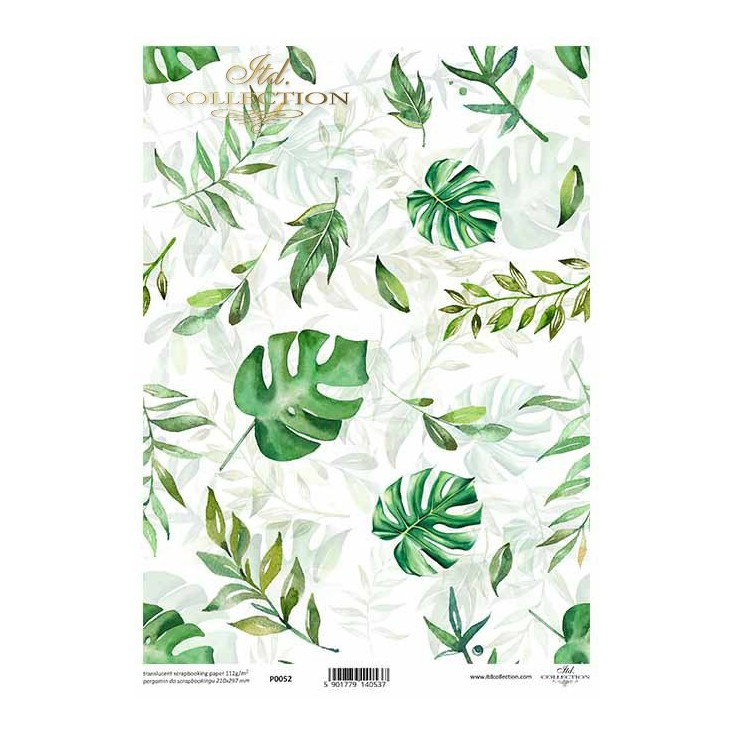 Vellum printed paper, tracing paper - ITD Collection - P0052