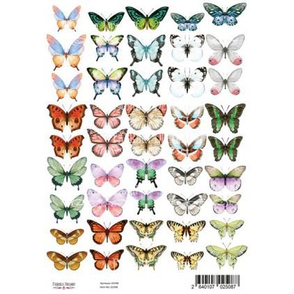 Butterflies 1 obrazki do wycinania, papier do scrapbookingu A4 - Fabrika Decoru