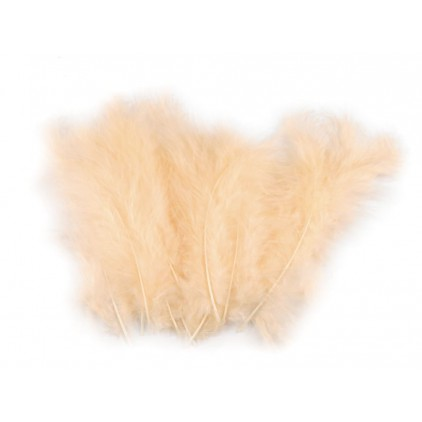Ostrich feathers light peach