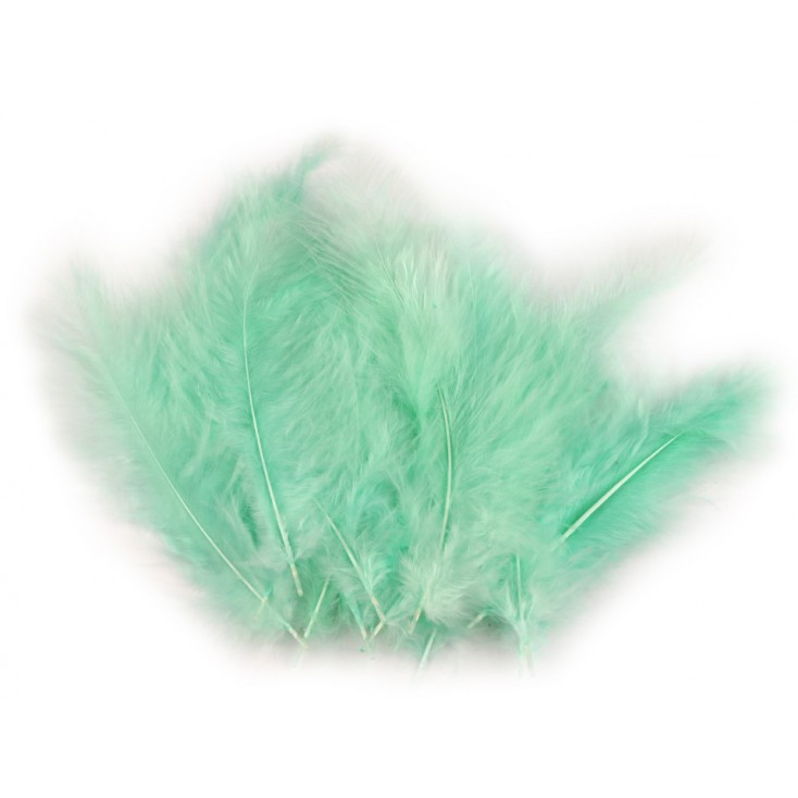 Ostrich feathers - mint